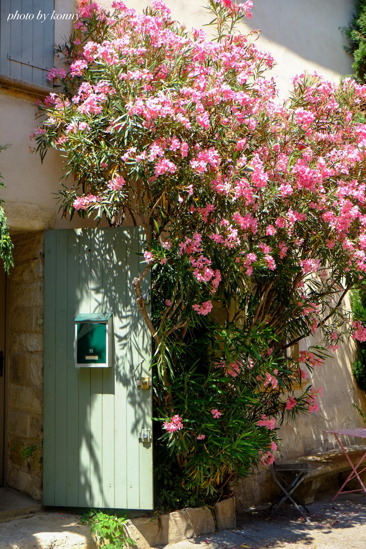 フランス 最も美しい村 ルールマラン